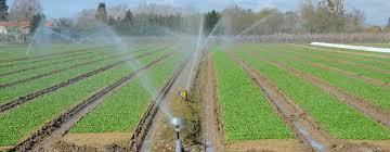 Segarra Garrigues Irrigation System PPP