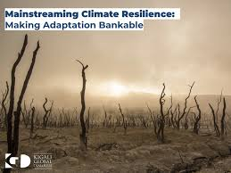 Trends in Mainstreaming Climate Resilience in Large Scale, Multi-sector Infrastructure PPPs